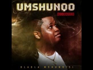 Dladla Mshunqisi Uphetheni Esandleni Ft. Sizwe Mdlalose, Assiye Bongzin, Dj Tira Mp3 Download Safakaza
