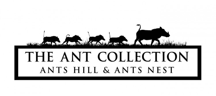 Ant's Hill & Ant's Nest