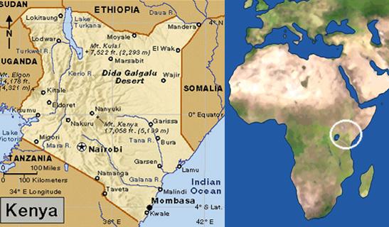 Formalits Budget Mto Photos Au Kenya Safari Galago
