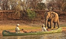 Expeditions Safari - Zambezi River