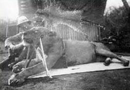 Patterson y uno de los devoradores de hombres de Tsavo