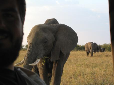 Paco León y elefanta en Masai Mara, Kenya. Agosto de 2005