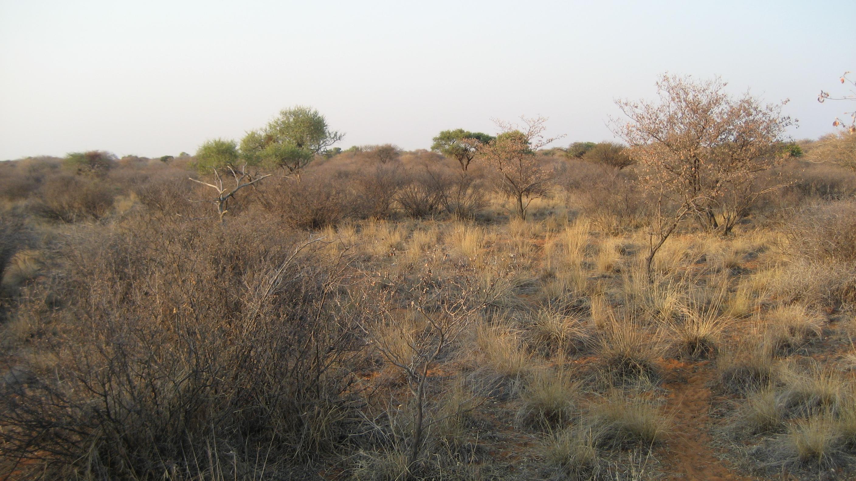 Sudáfrica 2007