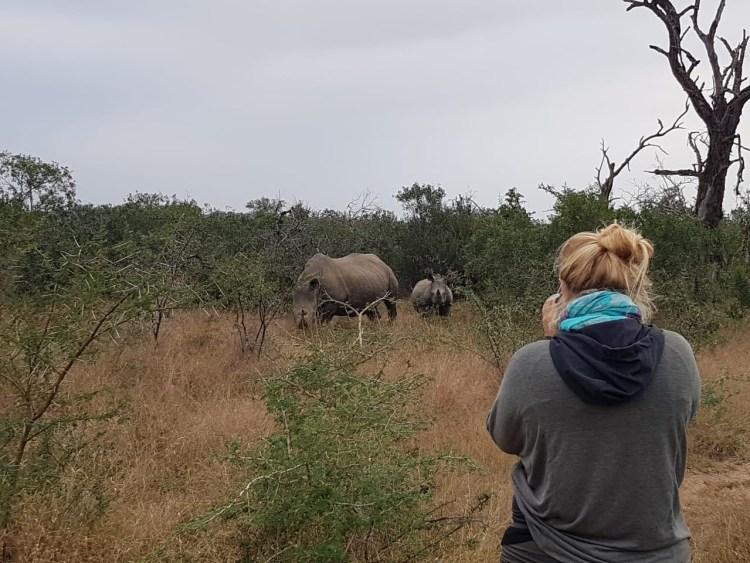 Nashorn Safari