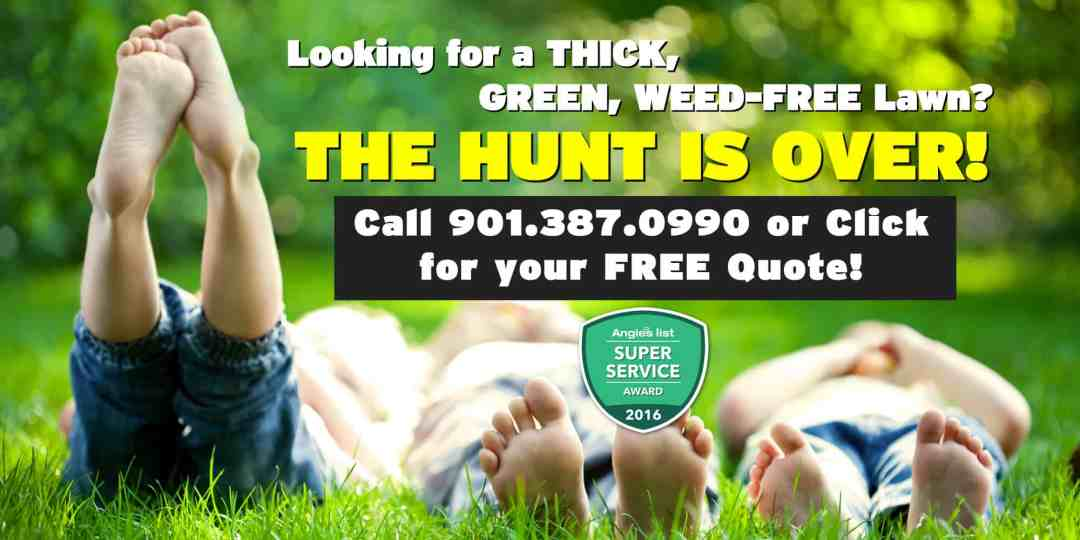 call or click to get a free quote from safari lawn care