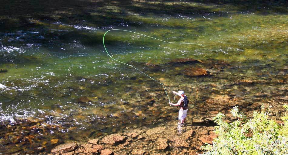 Tips on Learning for Fly Fish for Beginners