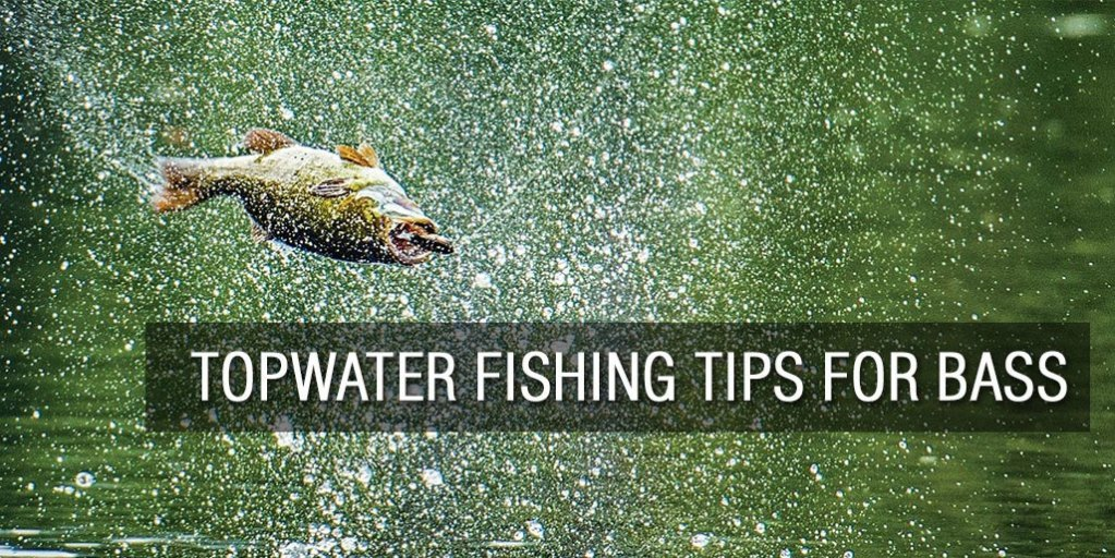 Topwater Fishing Tips for Bass