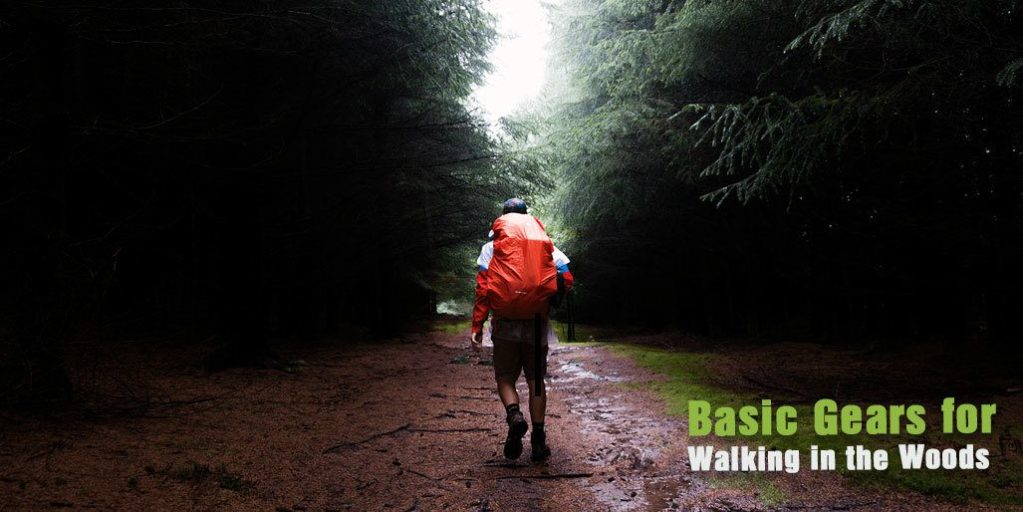 Basic Wears, Food and Gears for Walking in the Woods