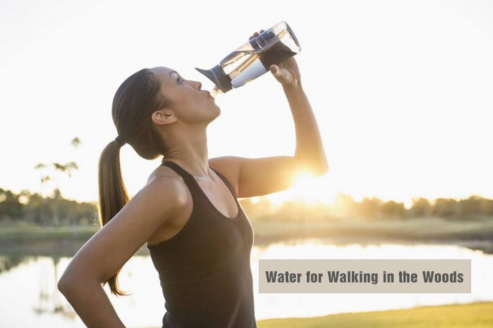 Water for Walking in the Woods