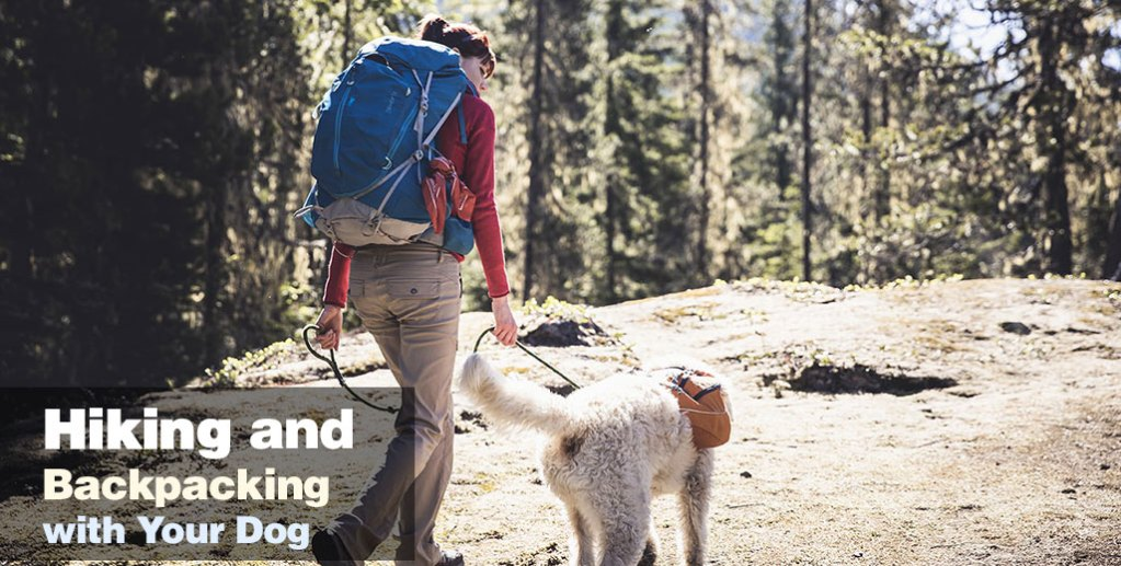 Hiking and Backpacking with Your Dog