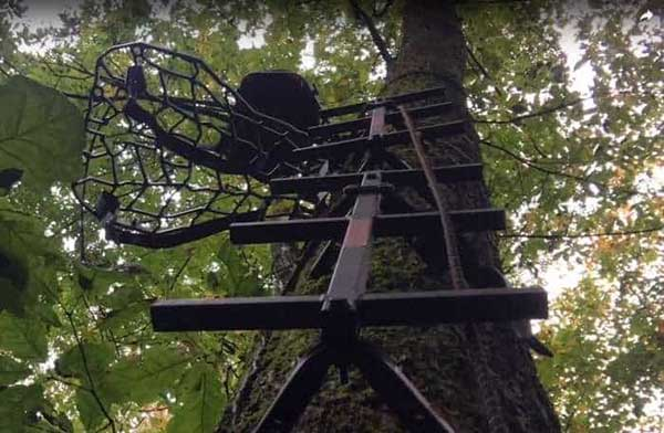 Different Types of Climbing Sticks and Treestands