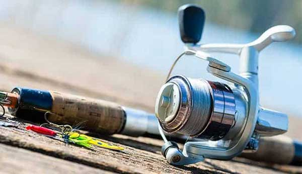 How to Choose the Best Fishing Reel Oil: Buying Guide