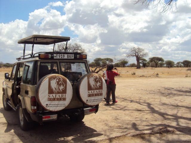 4 days ndutu budget camping safari