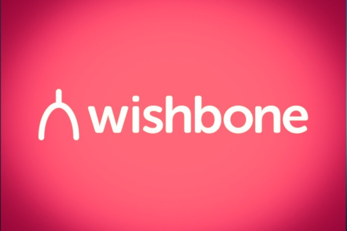 What's the Story with Wishbone?