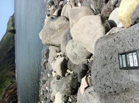 Fudeshima volcanic rock, 46 CPM