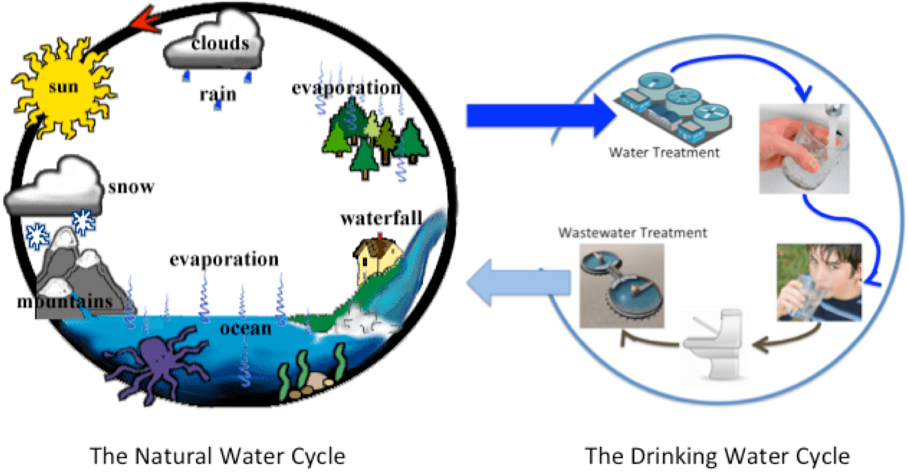 hight resolution of the u201cdrinking water cycle u201d is right safedrinkingwaterdotcom diagram of tap water
