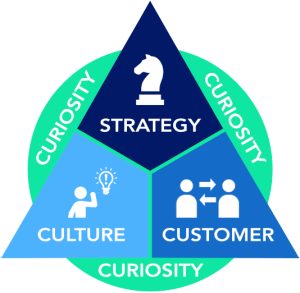 Strategy-Culture-Customer triangle