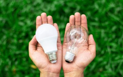 How Rechargeable Bulbs Can Surprisingly Improve Your Mood and Health
