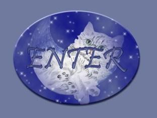 enter2