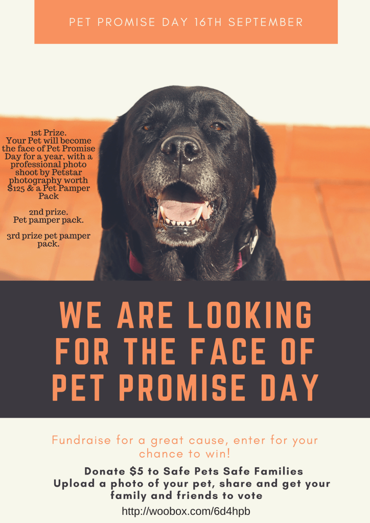 We are looking for the face of pet promise day (2)