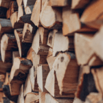 Keep bugs out of your house: don't stack firewood directly next to your home