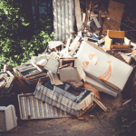 Keep bugs out of your house: eliminate clutter in the yard