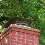 Keep bugs out of your house: chimney with cap