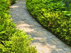 sidewalk with landscaping