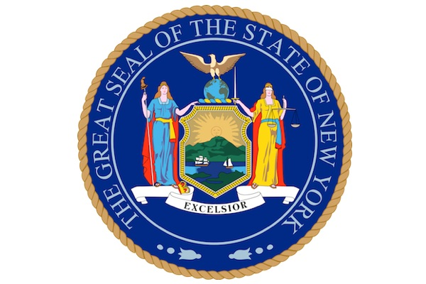 SSL Founder Testifies Before New York State Senate Task Force