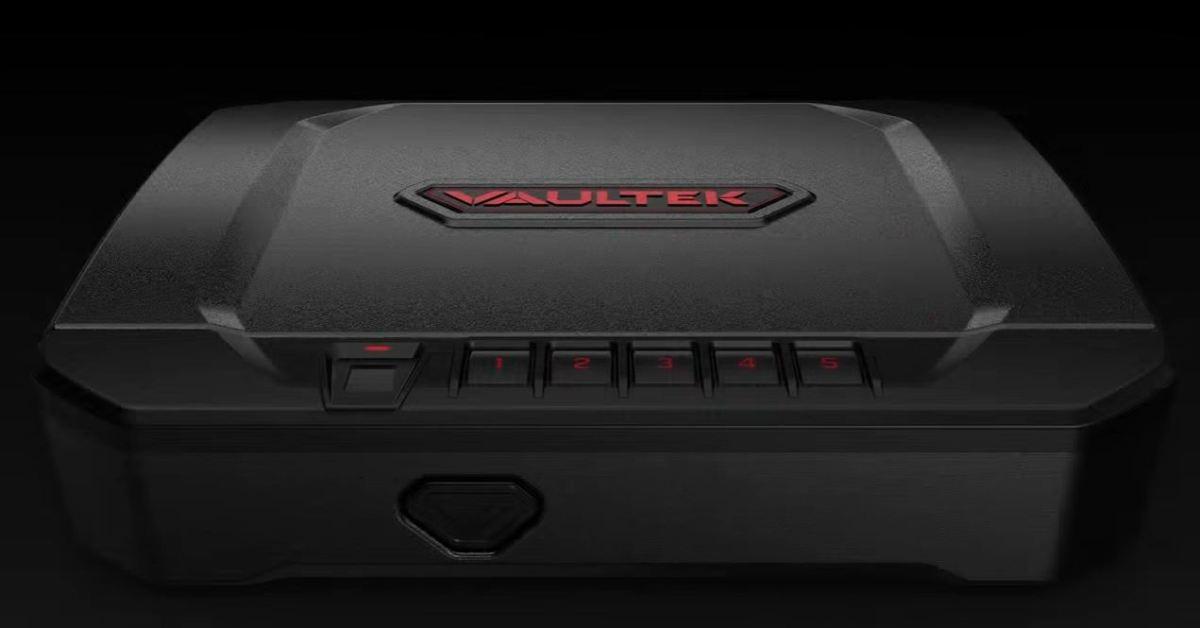 best biometric gun safe
