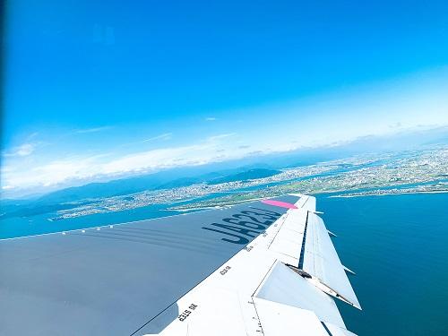 JAL国内線の空