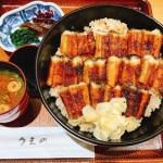 穴子を丼にしたら美味しいこと確定ですやんw「あなごめし うえの」さんが最高過ぎた☆
