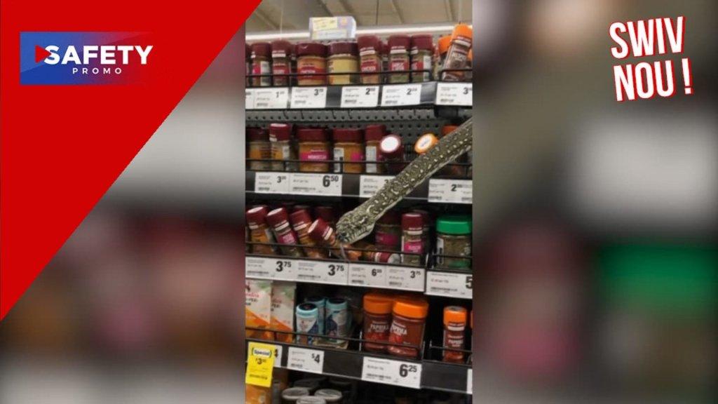 Australie. Une femme se retrouve face à face avec un serpent de trois mètres dans un supermarché