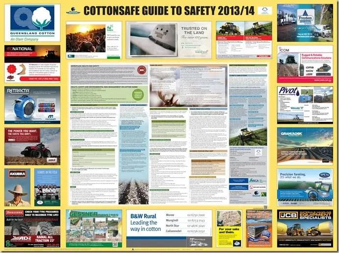 best practice guidelines workplace health in australia