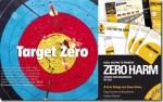 The Problem with Zero Harm