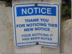 Sensemaking and Signs