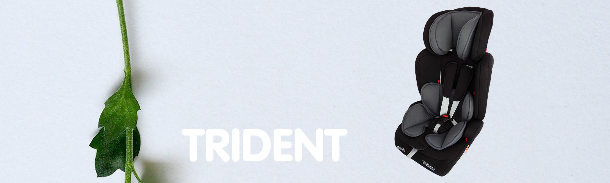 Trident-2000x600