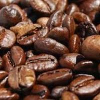 White girl brown beans black dog
