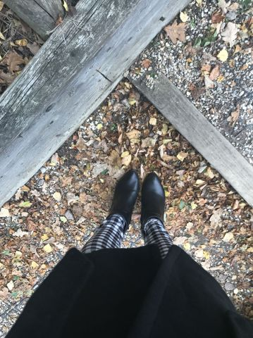 Autumn leaves Saffy dixon