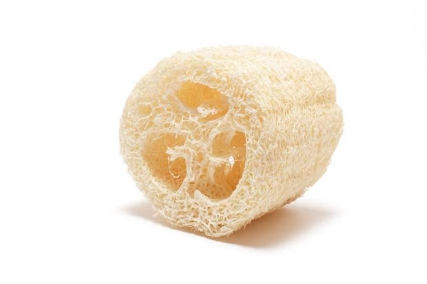 Dried Loofah luffa