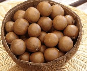 Bowl coconut shells