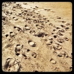 feet and grain