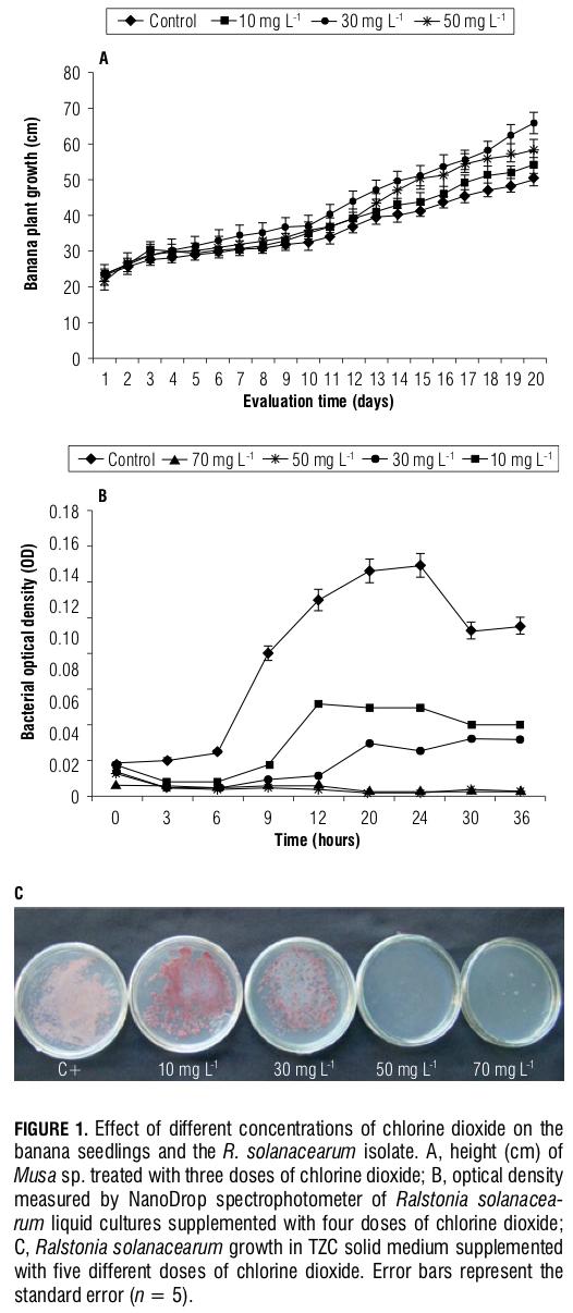 BananaMokodiseasemanagementwithresistanceinducersandchlorinedioxide