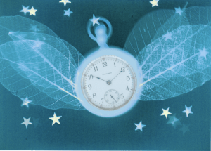 Time Flies graphic