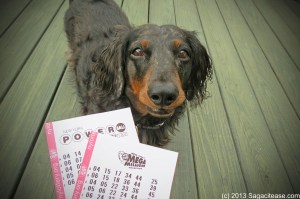 Lottery Test