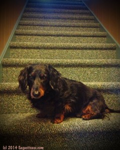 G on stairs