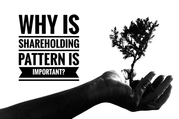 Why is shareholding pattern is important?