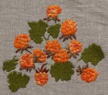 Hjortron; fjällets guld Hjortron (Rubus chamaemorus) är vanlig till lågalpin nivå. Myrar, kärr, sumpskogar, rishedar, videsnår, sjökanter. Ofta i stora bestånd. Stjälk med två blad, 5-7flikiga, och en vit blomma. Endast honblommorna bildar bär som till en början är röda. Som mogna orangegula, mjuka och saftiga.