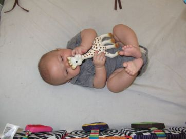 sophie the giraffe - 3