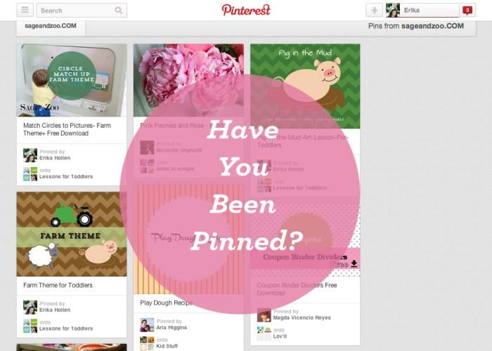 Pinterest- has your website been pinned?